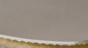 Однослойная транспортерная глянцевая,пищевая лента ПВХ ,Мин-ый Ду вала,10 мм