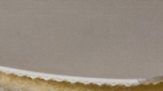 Однослойная транспортерная глянцевая,пищевая лента ПВХ ,Ду вала, 25 мм .